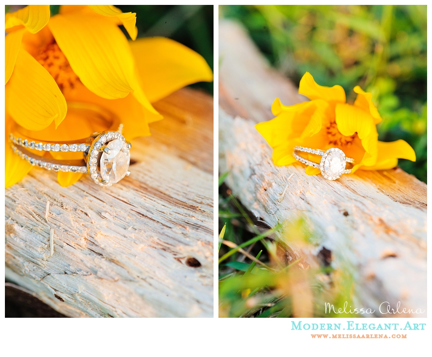 Image 3 of Ashley and Jeff's Proposal Story