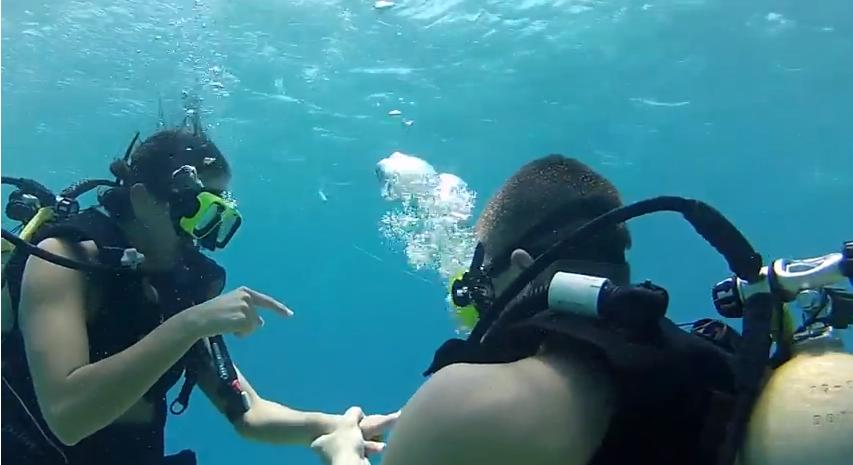 Image 2 of Treasure Hunt Leads to Underwater Proposal