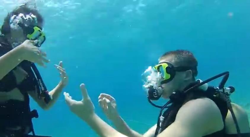 Image 1 of Treasure Hunt Leads to Underwater Proposal