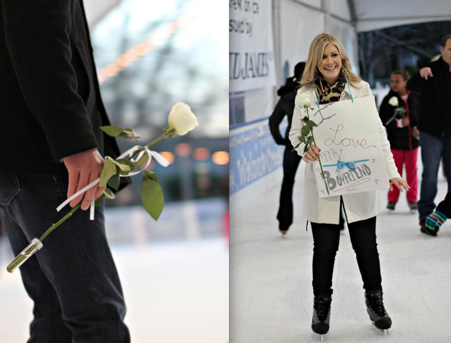 skating proposal