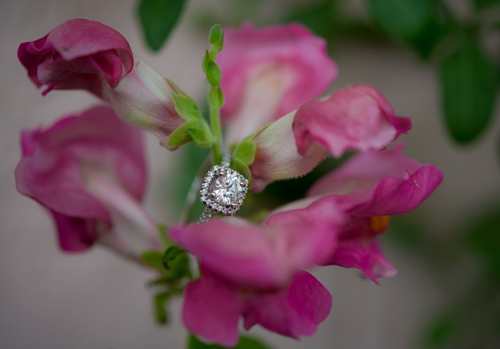 Image 8 of Reader's Rings IV; Engagement Ring Photos Submitted by You!