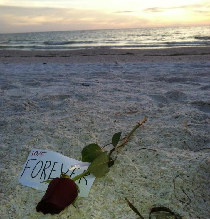 Image 4 of Siesta Key Beach Proposal