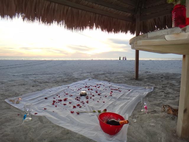 Image 3 of Siesta Key Beach Proposal