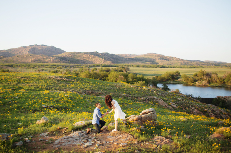 Image 7 of A Stunning Outdoor Marriage Proposal