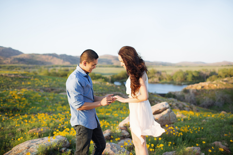 Image 8 of A Stunning Outdoor Marriage Proposal