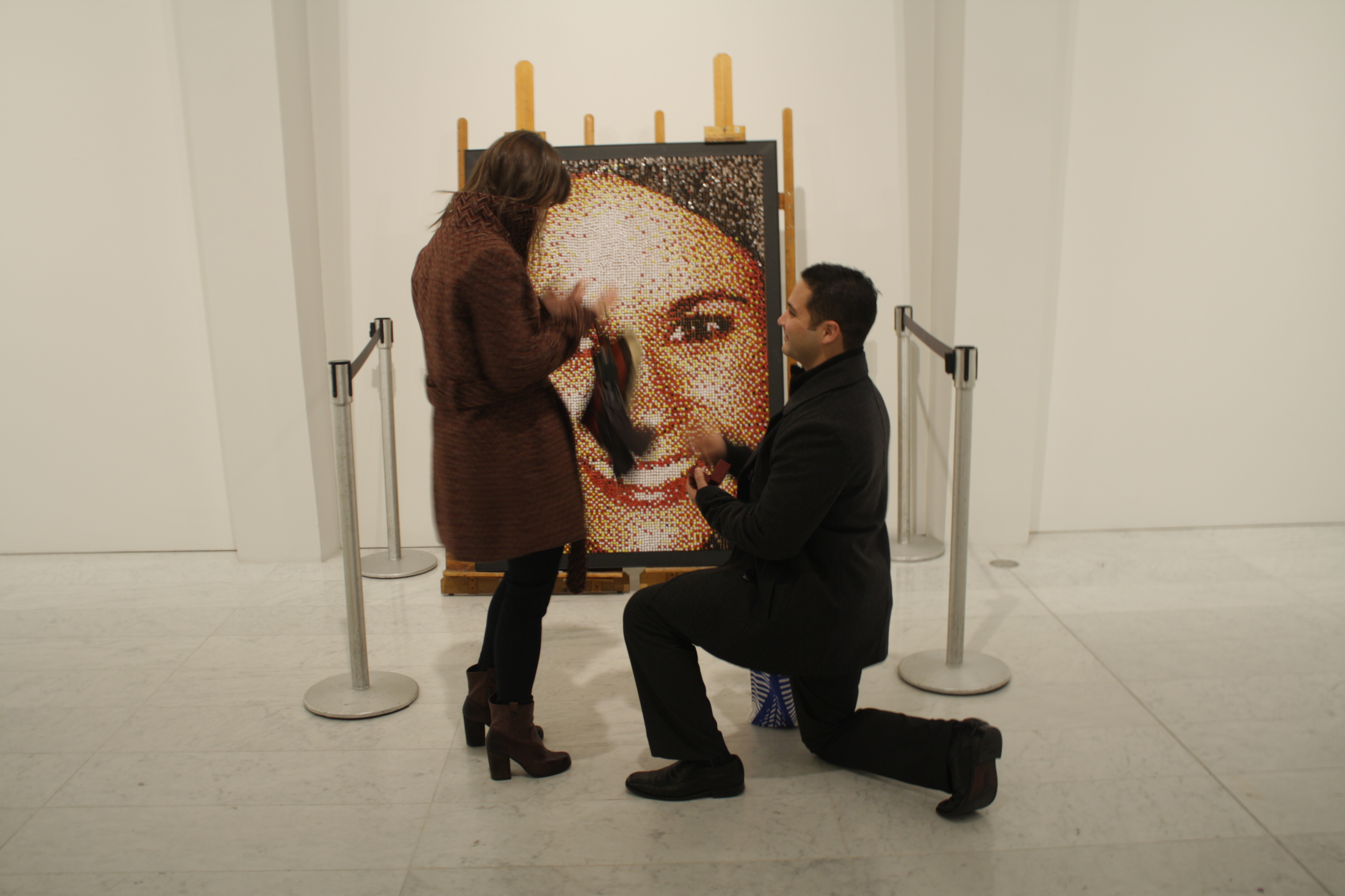 Image 3 of Push Pin Portrait Marriage Proposal
