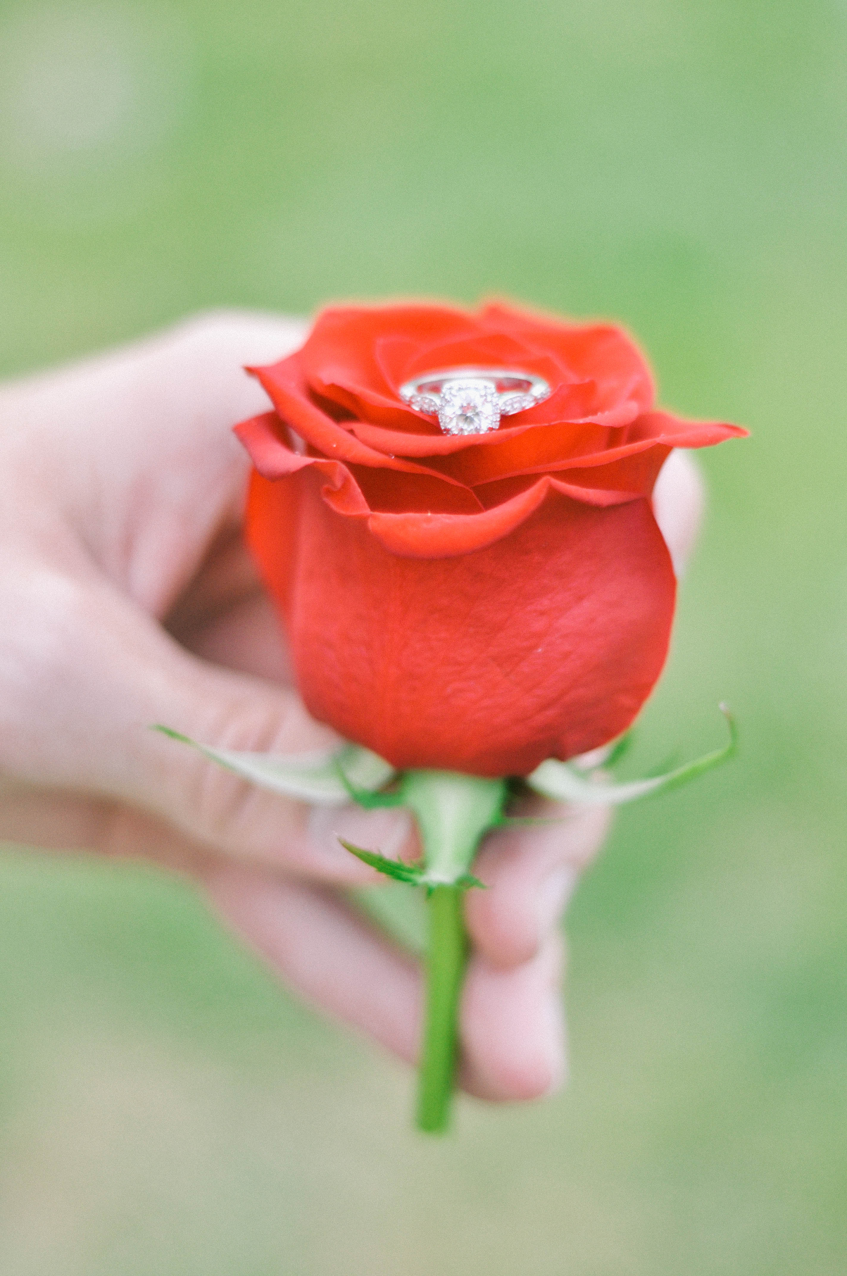 Scavenger_Hunt_Marriage_Proposal_DSC_0253