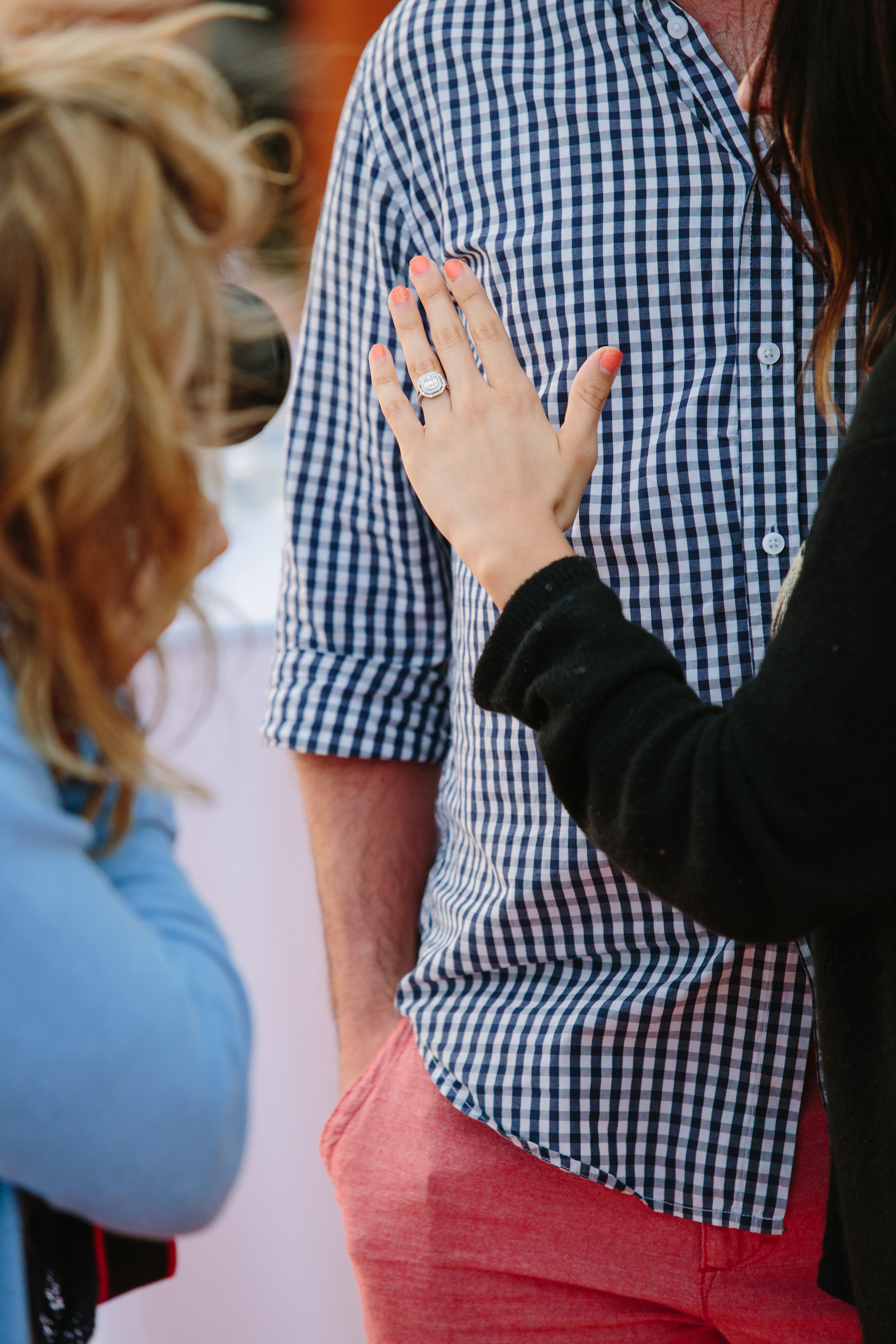 Surprise Marriage Proposal on Fourth of July040