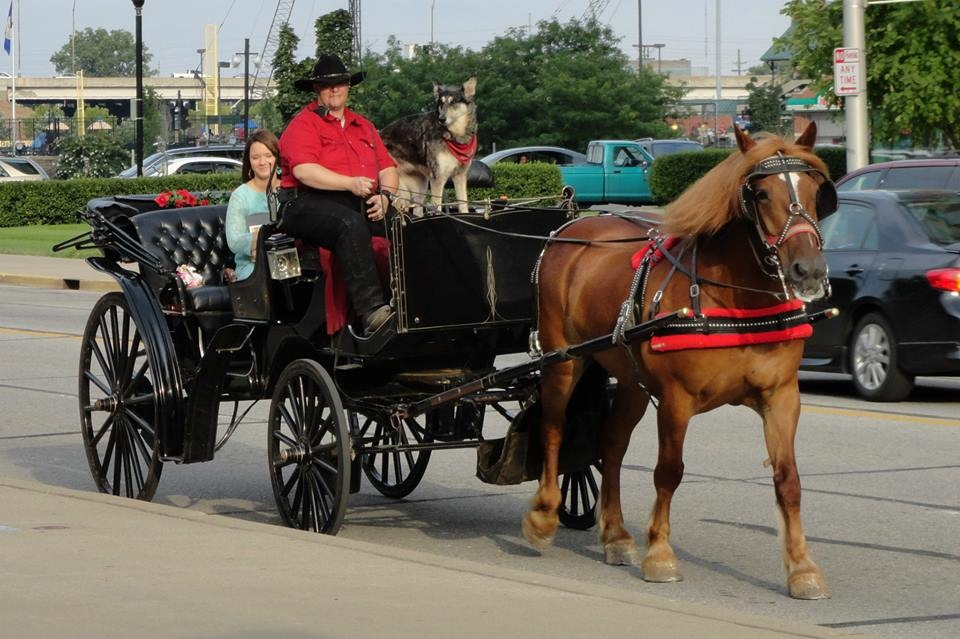 Image 2 of Carriage Ride Proposal in Louisville