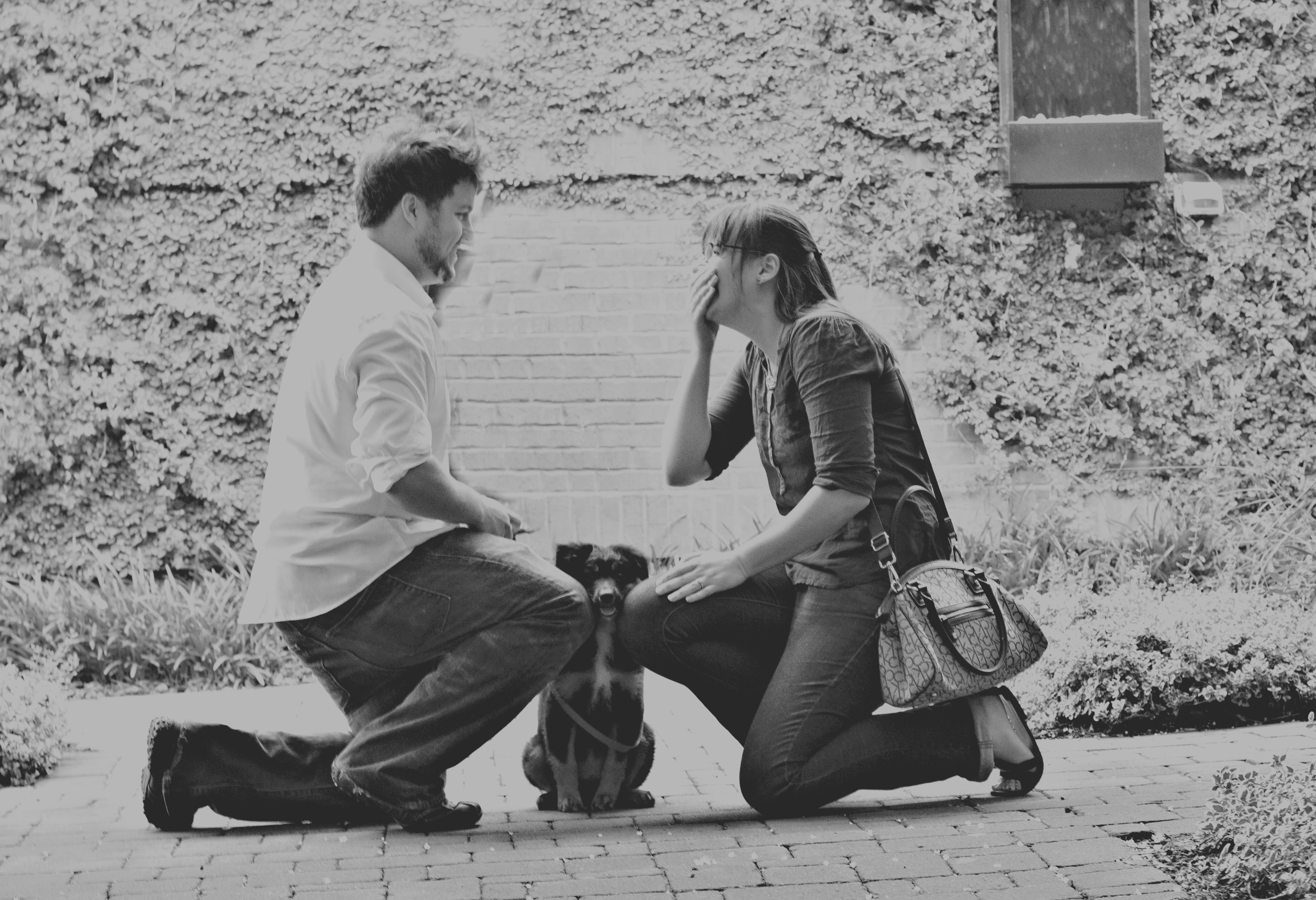 Image 2 of The Cutest Puppy Proposal of All Time