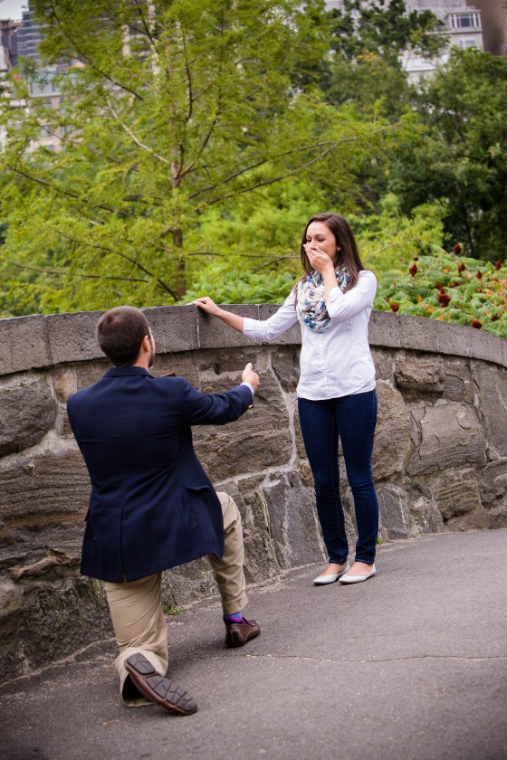 Central Park Marriage Proposal_12