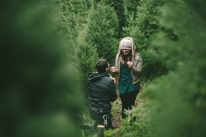 Image 9 of Marriage Proposal at a Christmas Tree Farm