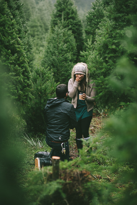 Image 10 of Marriage Proposal at a Christmas Tree Farm