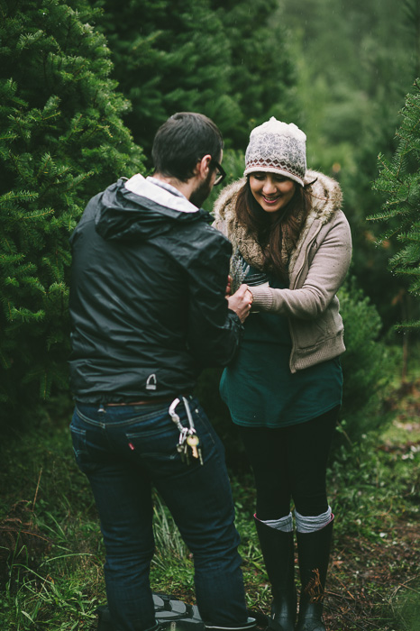 Image 14 of Marriage Proposal at a Christmas Tree Farm