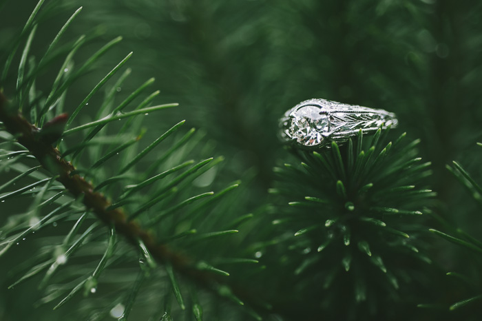 Christmas Marriage Proposal_62