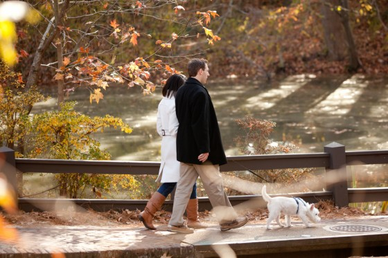beautiful proposal in the park 01_low