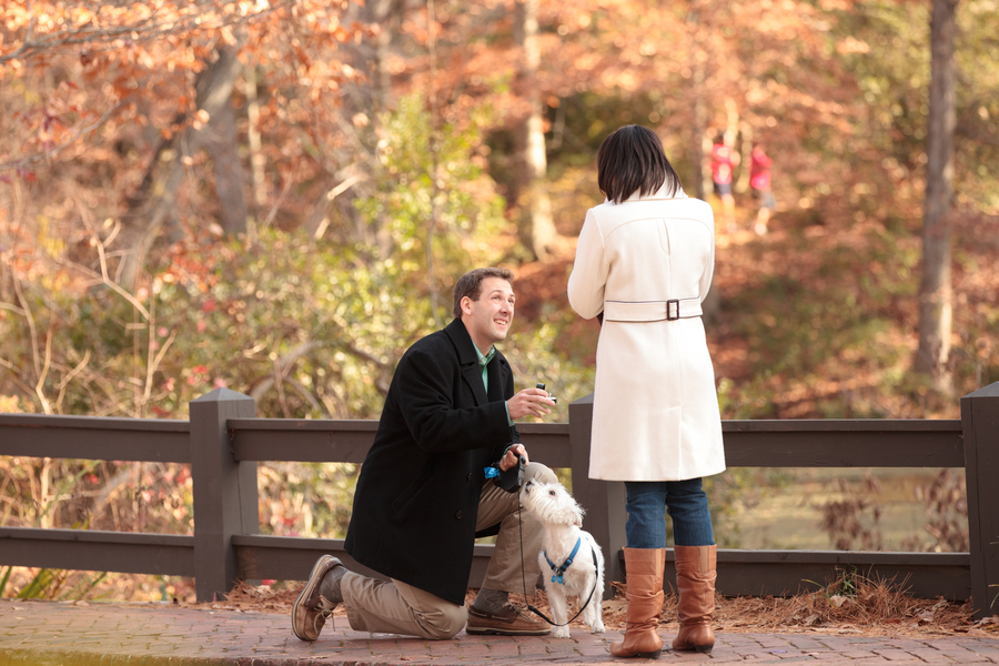 beautiful proposal in the park 08_low