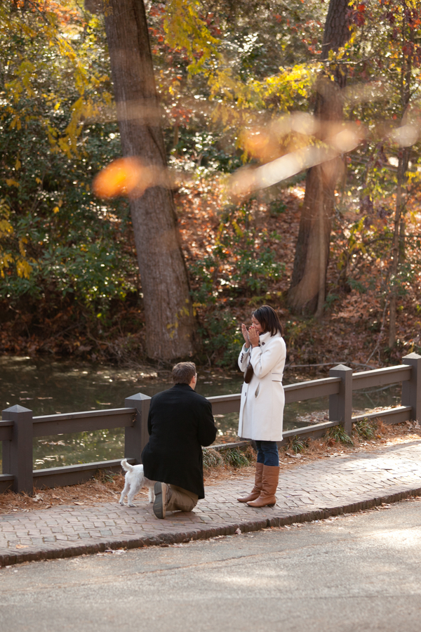 beautiful proposal in the park 09_low