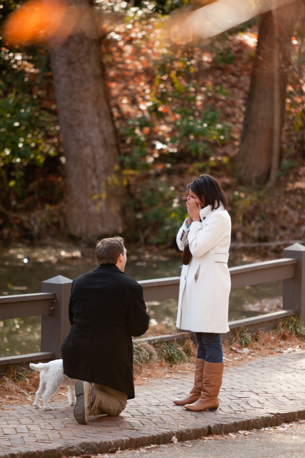 beautiful proposal in the park 10_low