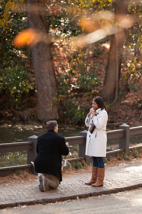 beautiful proposal in the park 11_low