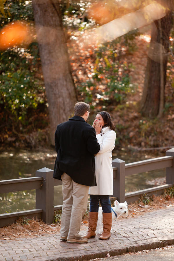beautiful proposal in the park 14_low