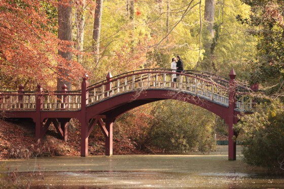beautiful proposal in the park 49_low