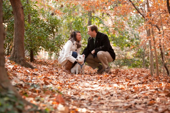 beautiful proposal in the park 66_low