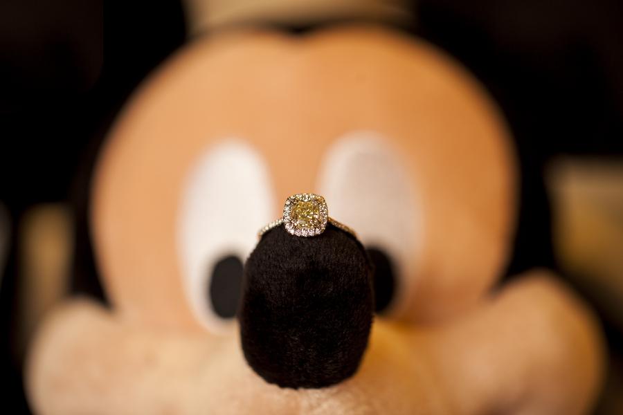 Image 19 of Christina and Jon; Proposal at Disney