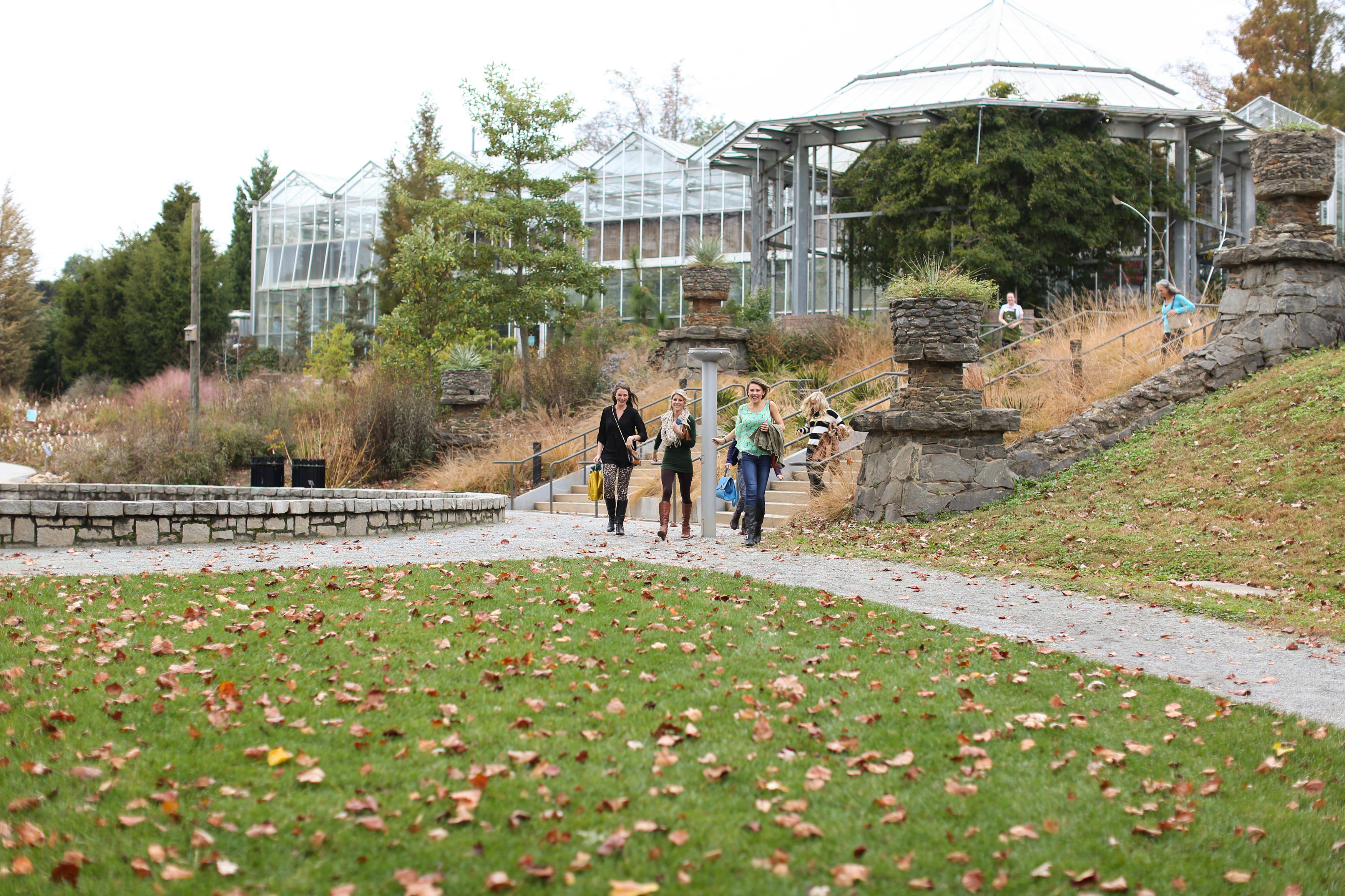 Image 14 of Alex and Lindsey | Atlanta Botanical Gardens Proposal