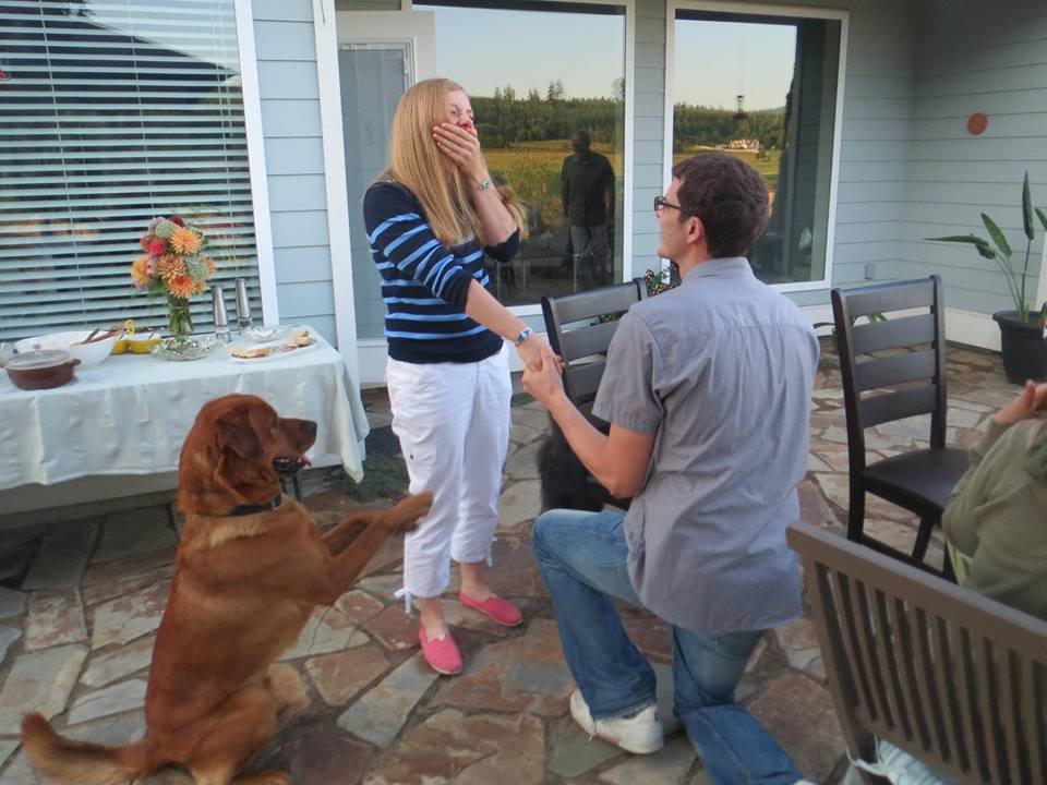 Image 1 of 20 Cute Marriage Proposal Ideas with Dogs