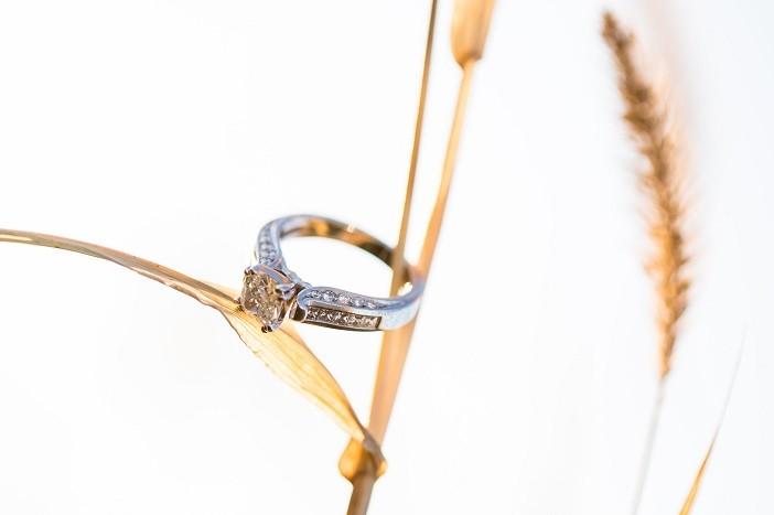 Cowboy Proposal (1)