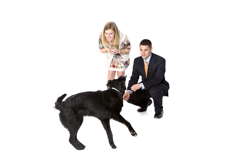 Image 4 of Family Photoshoot (Dog Too!) Turns into Marriage Proposal