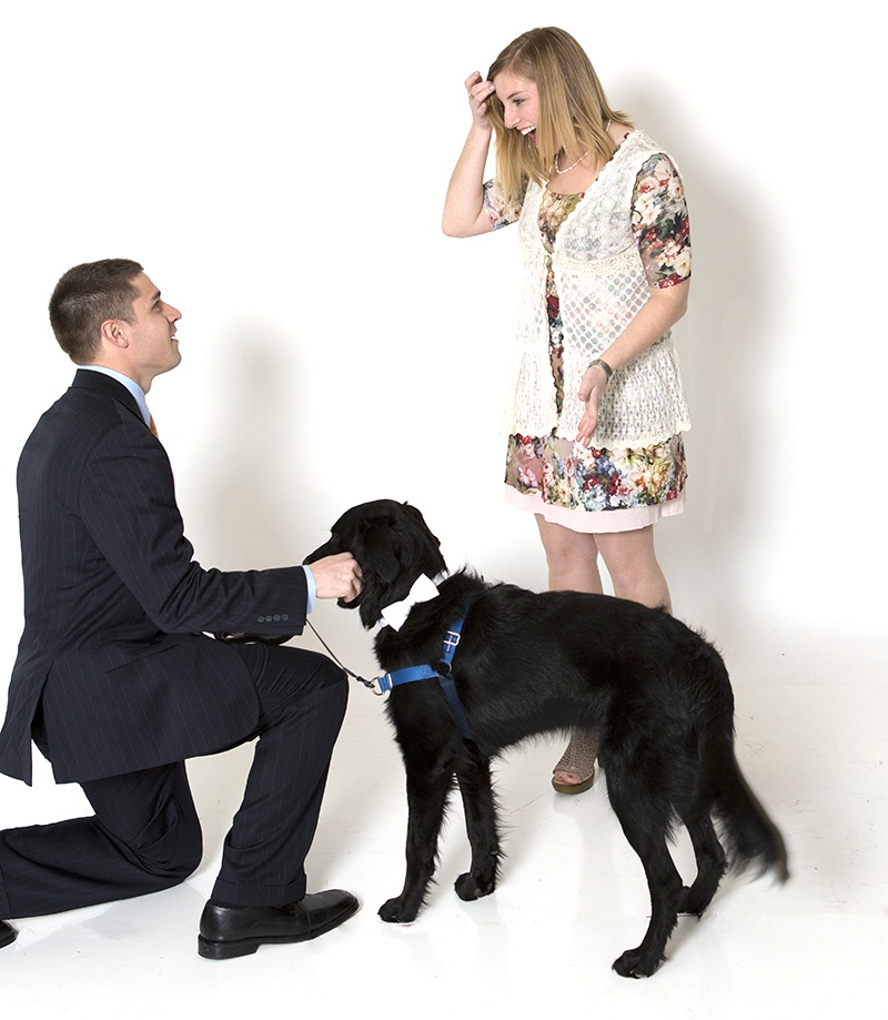 Image 5 of Family Photoshoot (Dog Too!) Turns into Marriage Proposal