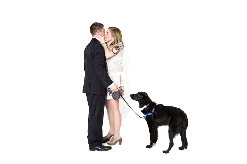 Image 13 of Family Photoshoot (Dog Too!) Turns into Marriage Proposal