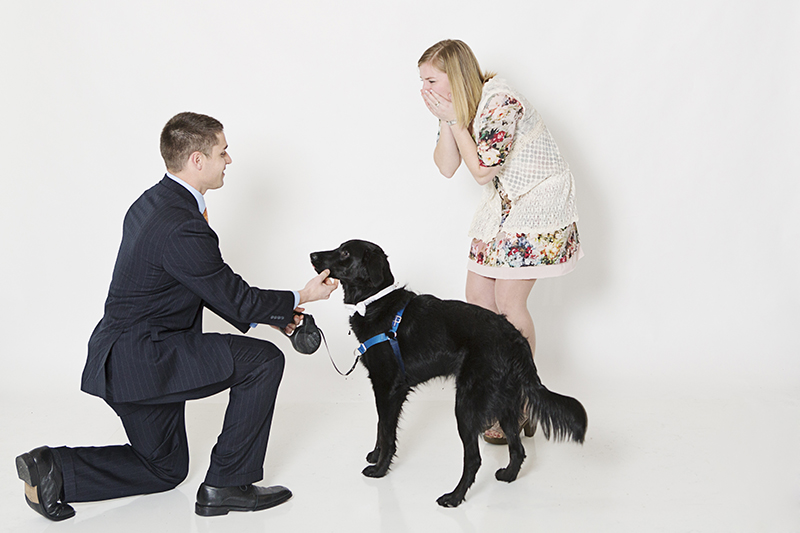 Image 6 of Family Photoshoot (Dog Too!) Turns into Marriage Proposal