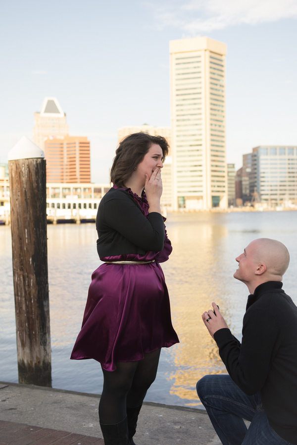 Image 3 of Baltimore Harbor Marriage Proposal