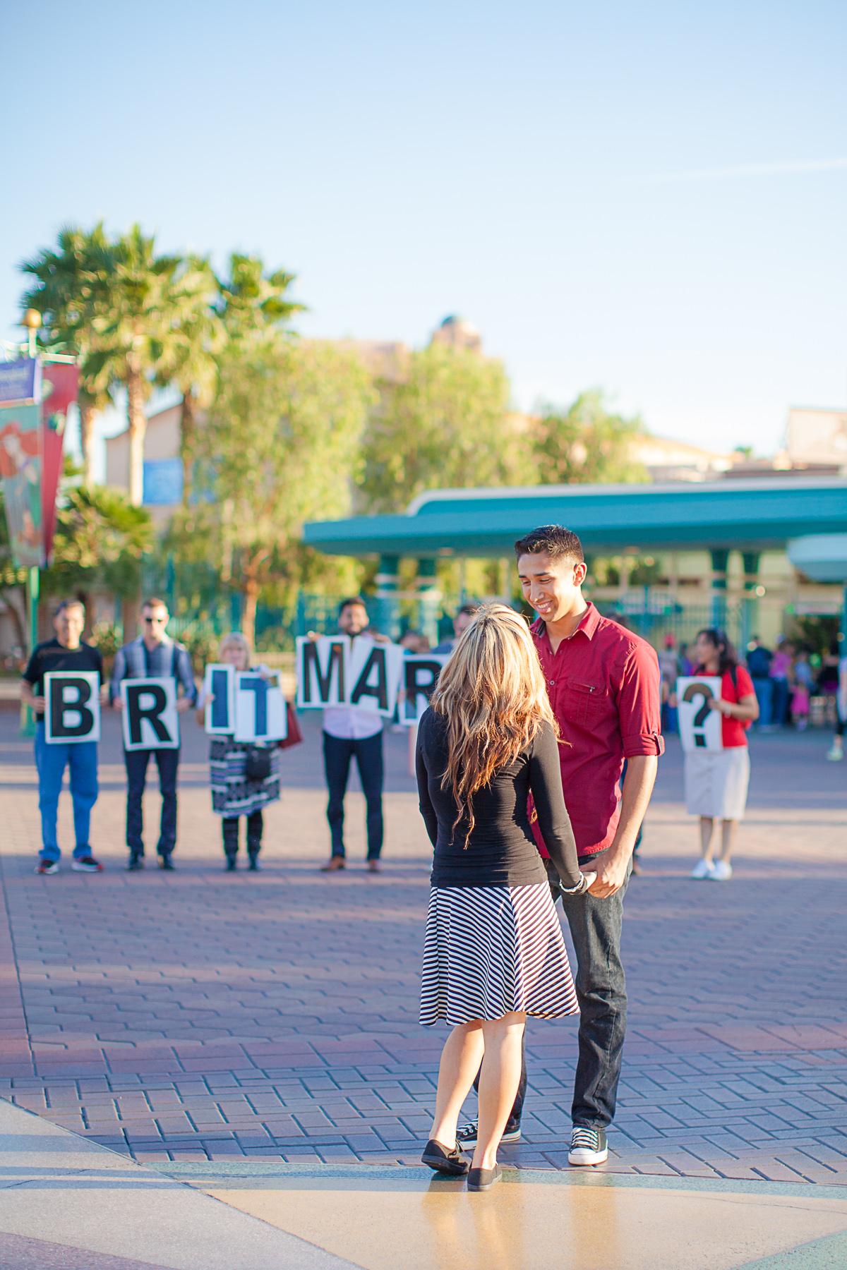 Image 5 of Magical Disneyland Proposal