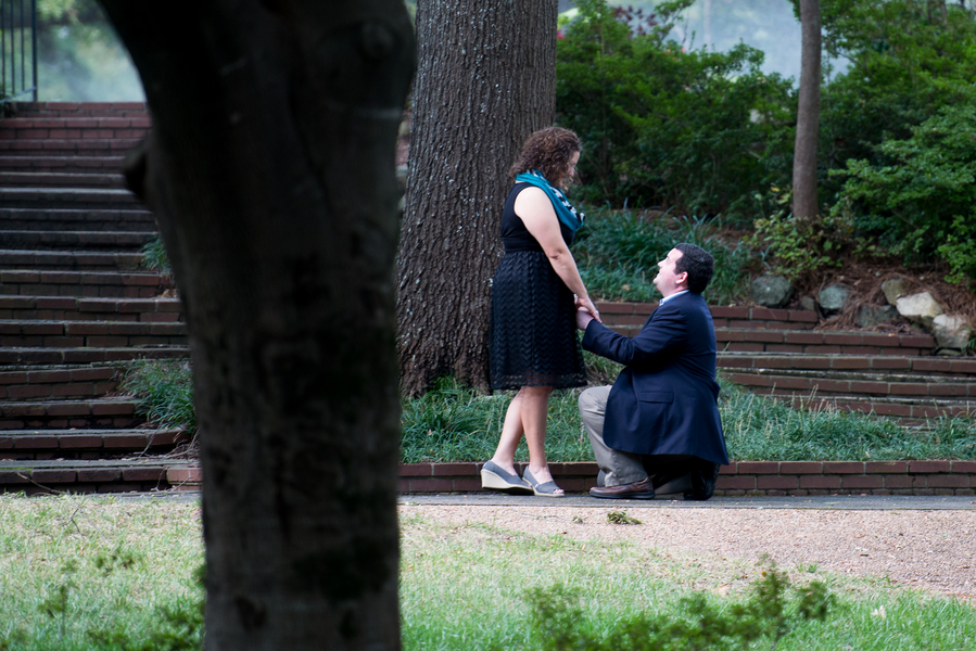 Image 11 of Leigh and Phillip | Gorgeous Garden Proposal