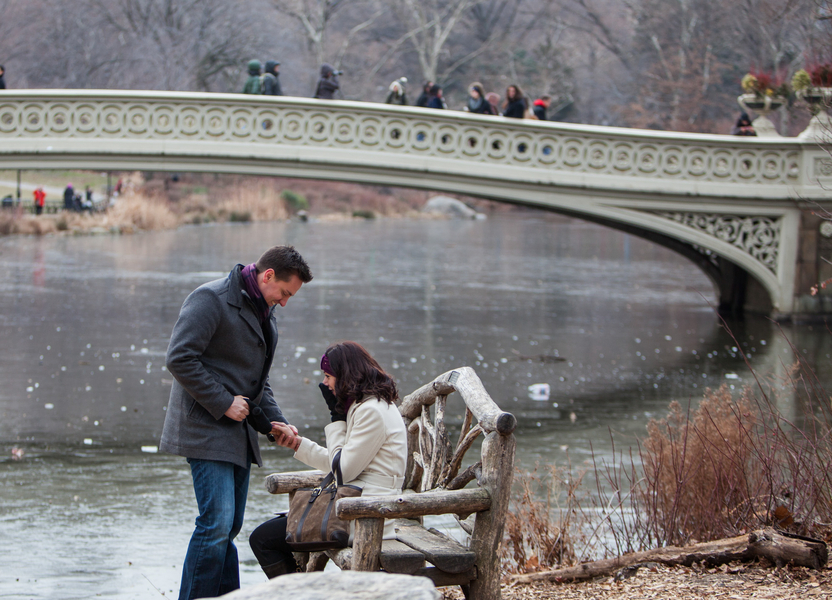 Image 2 of Marriage Proposal in Central Park | Matthieu and Sam