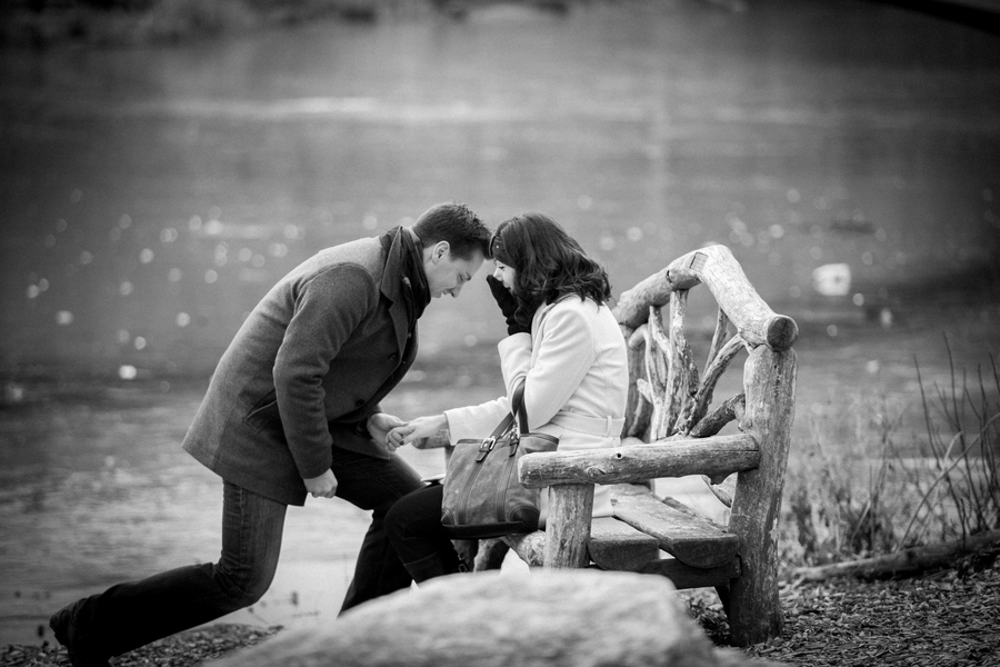 Image 3 of Marriage Proposal in Central Park | Matthieu and Sam