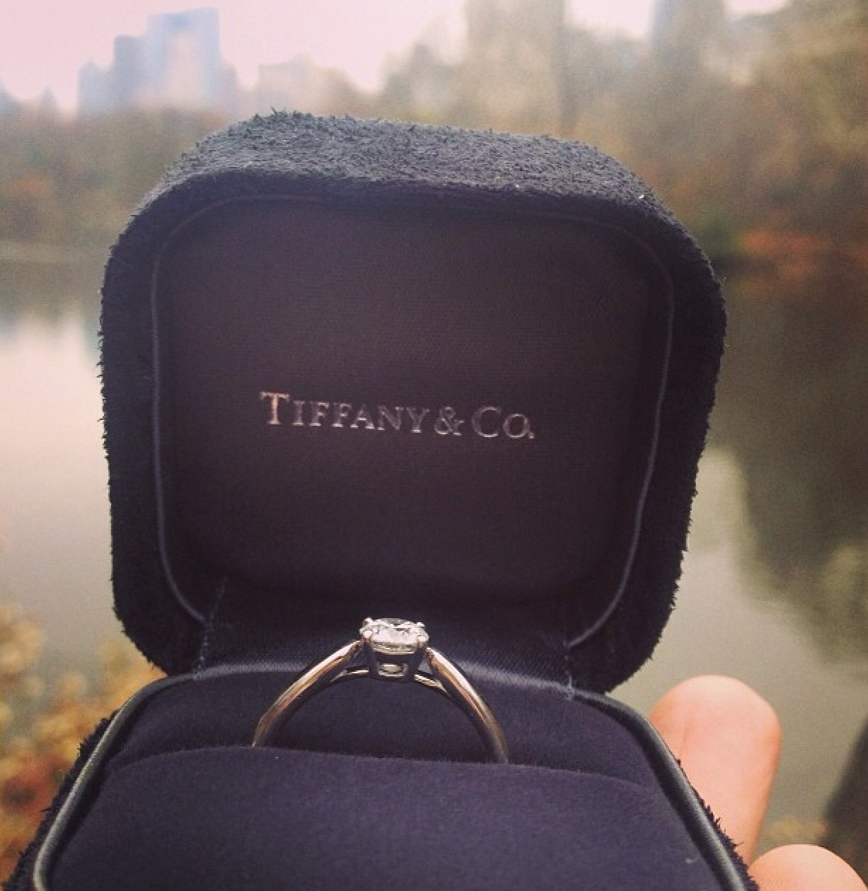 tiffany engagement ring in proposal
