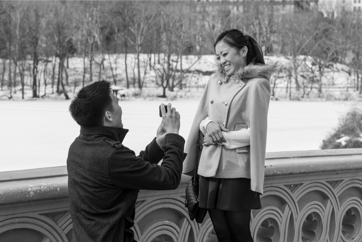 Image 3 of Central Park Winter Proposal