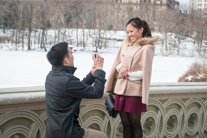 Central Park Winter Proposal