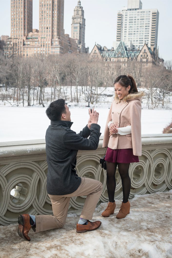 Image 6 of Central Park Winter Proposal