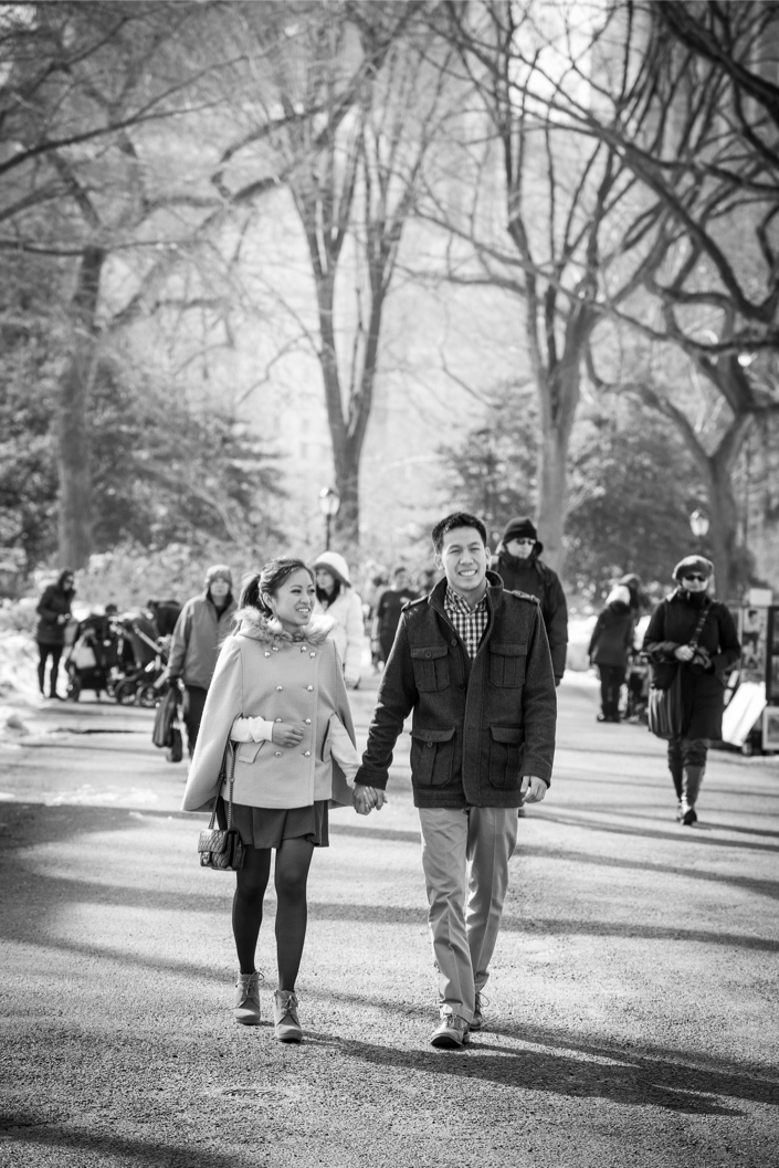Central Park Proposal in Winter 2