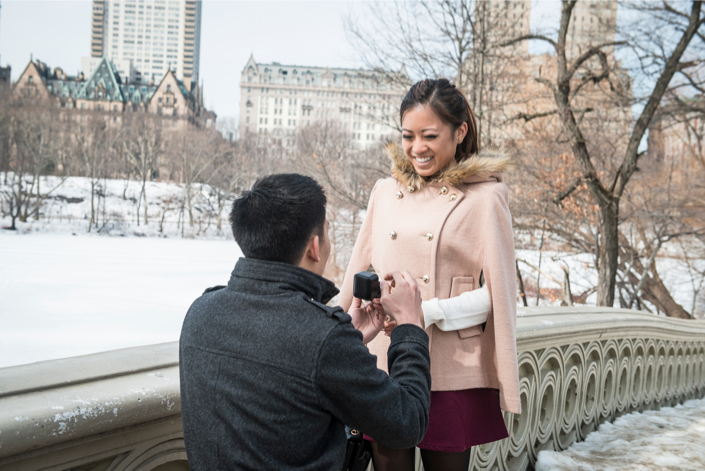 Image 7 of Central Park Winter Proposal