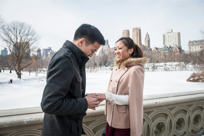 Central Park Proposal in Winter 209