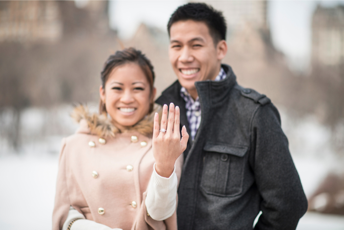 Image 10 of Central Park Winter Proposal