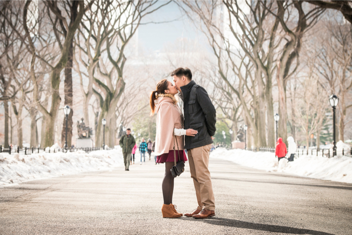 Central Park Proposal in Winter 27