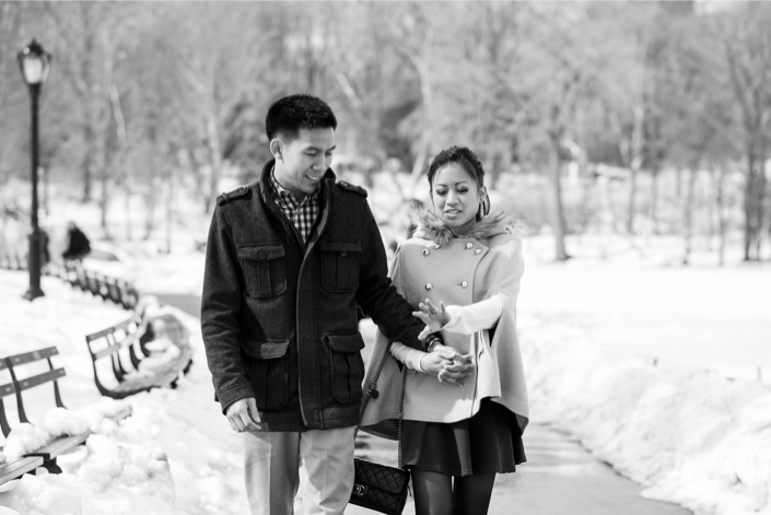 Central Park Proposal in Winter 308